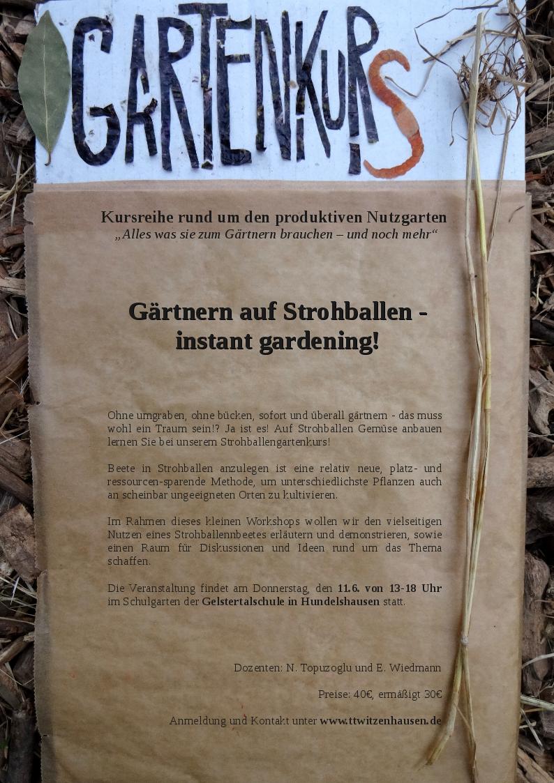 Unser Schulgartenprojekt 2015 | Gelstertalschule Hundelshausen Gaertnern Auf Strohballen Gemuese Pflanzen