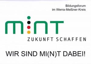 MINT (800x565)